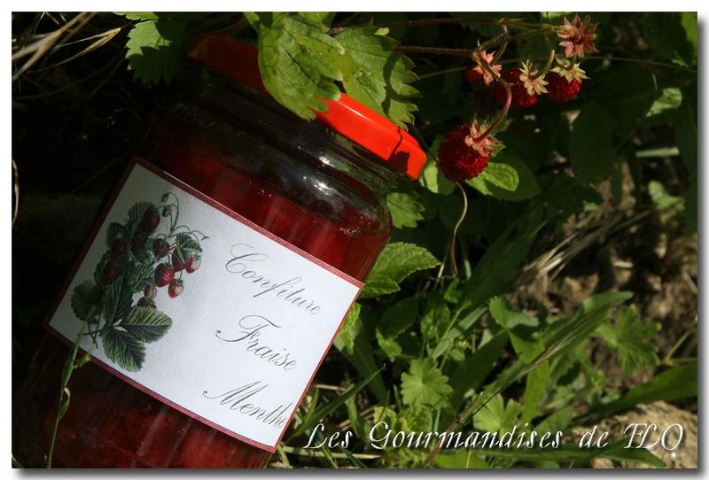 fraise menthe 2a