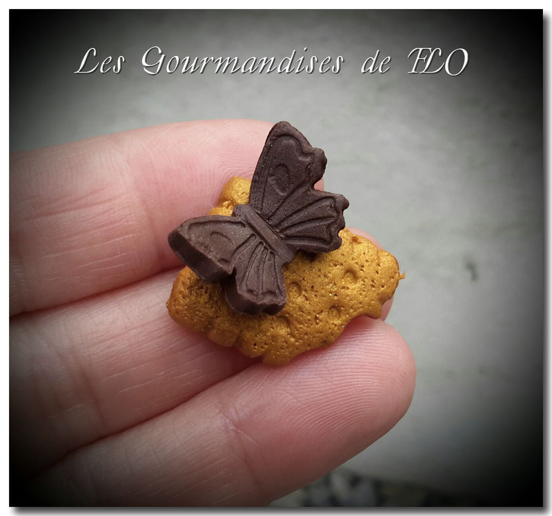 biscuit papillon choco 1
