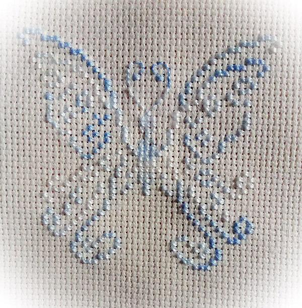 papillon ciel de glace