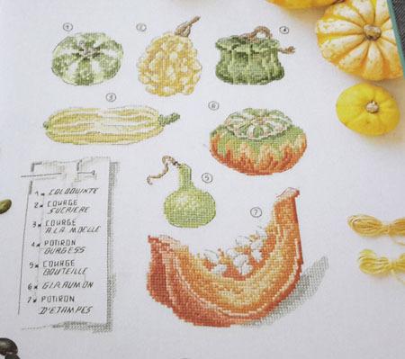 Jardin potager 3
