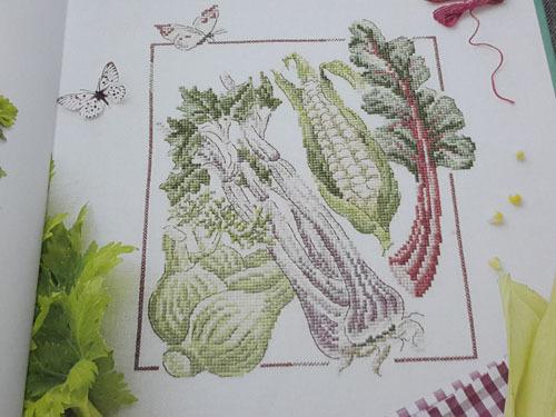 Jardin potager 6