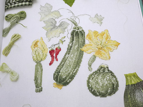 Jardin potager 10